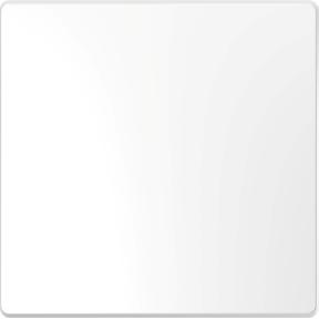 Клавіша 1-клавішних вимикачів,  термопласт, метал : АСТ-Світлотехніка Київ SVT.org.UA