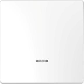 Клавіша з віконцемдля світлової  індикації, термопласт, метал : АСТ-Світлотехніка Київ SVT.org.UA