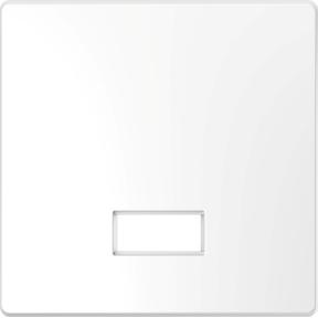Клавіша с прямокутним віконцем для  символів,термопласт, метал : АСТ-Светотехника Киев SVT.org.UA